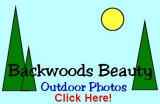 Backwoods Beauty Photos - Click Here!